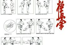 Martial arts etc