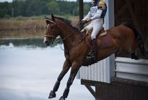 Eventer... a dangerous game, we love