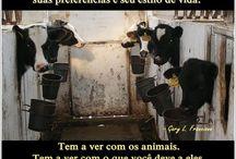 Abordagem Abolicionista de Gary L. Francione - Posters em Português