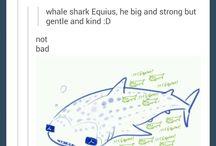 Aquariumstuck