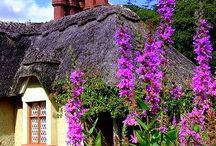 English houses and gardens
