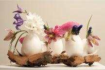 Ovos etcc arte em ovos / Arte em ovos