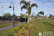 Tampa Landscapers For Athletic Fields / Tampa landscapers specializing in athletic field design, renovation and maintenance. Landscaping Tune-Ups, Inc. has over 30 years experience. Call us today at (813) 413-6325.