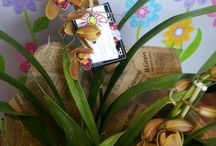 Plants we stock