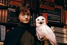 Harry Potter Lovers