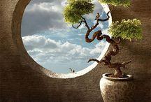 Peaceful..... / by Sandra