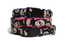 Pet Collars & Leashes / Pet Collars & Leashes