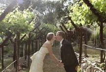 Wedding Ideas / by Candice Reiner
