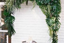 Тропические свадьбы