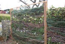 изгородь из органики