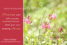 Photography  / by Flora Carswell