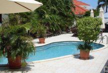 Hotels Aruba / The best Hotels in Aruba at the best price! https://www.hotelsclick.com/hotels/AU/hotel-aruba.html
