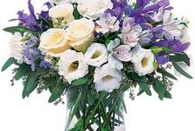 purples & blues / by Terrafolia Flowers