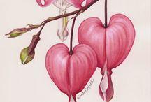 Trennendes Herz