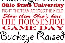 Being a Buckeye! / by Kerry Dawson