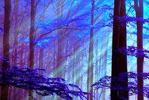 magic nature..