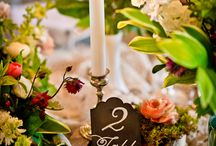 tuba's wedding