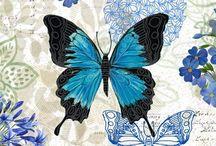 Mavi kel