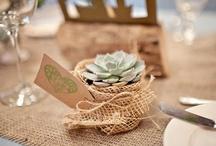 Grace + Matt Zion Wedding Plan / A shared board by Grace + wedding planner Julie! / by Grace Darnell