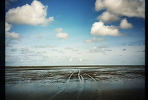 Ameland / by Beate Knappe Photography
