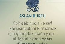 ASLAN BURCU;)