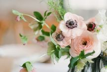 Wedding Bliss / From flowers to DIY details - all the things we love about weddings.