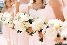 Janet Dunnington Blog / Posts from Janet Dunnington Destination Weddings Blog