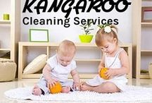 Carpet Cleaning Service / Carpet Cleaning Service