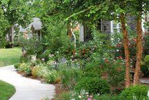 Gardening/Landscaping ideas / by Megan