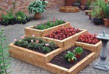 # Idées potager # / Quoi de mieux que de faire pousser ses petits légumes soi-même...