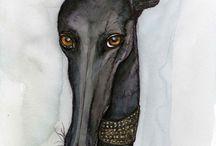 greyhounds / by Pam Hootman-Glazier