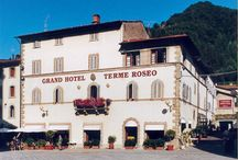 Grand Hotel Terme Roseo **** / www.termeroseo.it  tel 0543 911016
