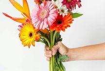 Arrajos florais