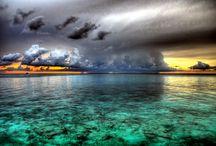 Cayman Favorites