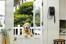 ventilation/dog friendly design