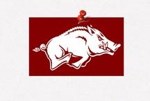 Arkansas Razorbacks / Pinterest Board For Arkansas Razorbacks Fans / by Jeremiah Mathews