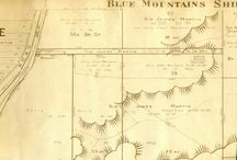 History: Linden / Central Mountains History Linden