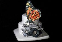 Piece of Cake / by Signe Blum