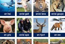 norsk språk