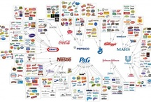Business, Web & Marketing