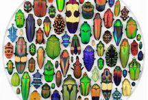 NATURE ART / ART FROM NATURE