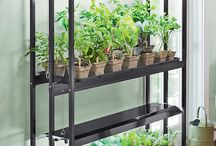 Indoor Greenhouse / This board is all about growing vegetables indoors over the winter months.