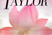 Pizzazz Book Promotions: Romance Books / Romance books