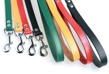 Dog harness products / Discover our ranges of harness products and find them on zolux.com