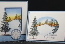 STAMPIN UP CARDS 3 / by Deanna Dunn