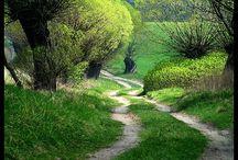 natura wieś