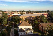 MSA Campus Views