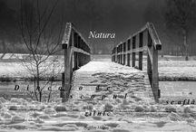 Timp liber / Dincolo de atribuțiile zilnice se află natura.