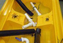 Inch spider