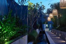 Project   The Purist Villas in Collaboration with Yvonne Hulst